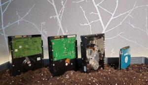 چیا نتورک چیست؟ آموزش کامل استخراج (فارمینگ) ارز دیجیتال چیا کوین